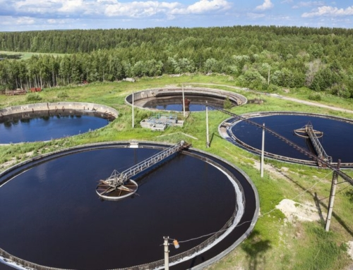 Eco-Friendly Water Treatment Works Best With Experienced Bacterial Flora